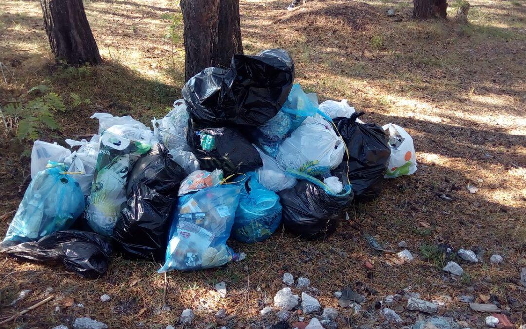 Ayudas contempladas en el Plan de Apoyo a la implementación de la normativa de residuos
